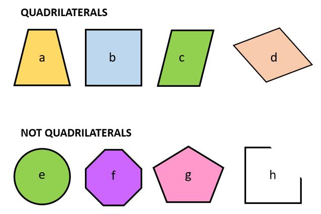 Quadrilaterals & Not Quadrilaterals
