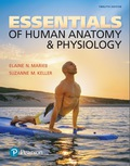 EBK ESSEN.OF HUMAN ANATOMY+PHYSIOLOGY